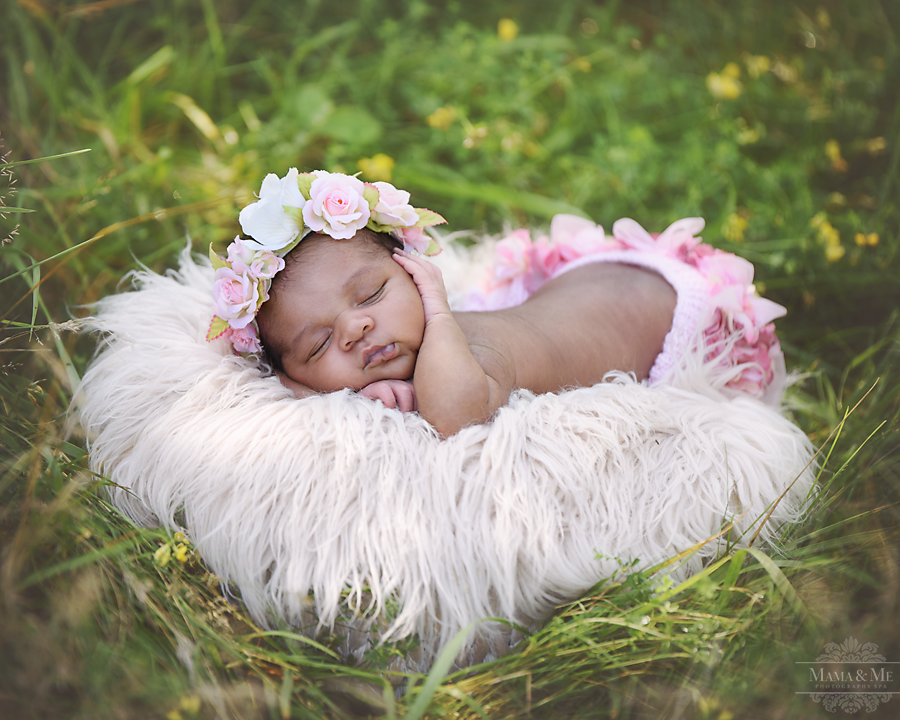Newborn Photography Youngstown Ohio