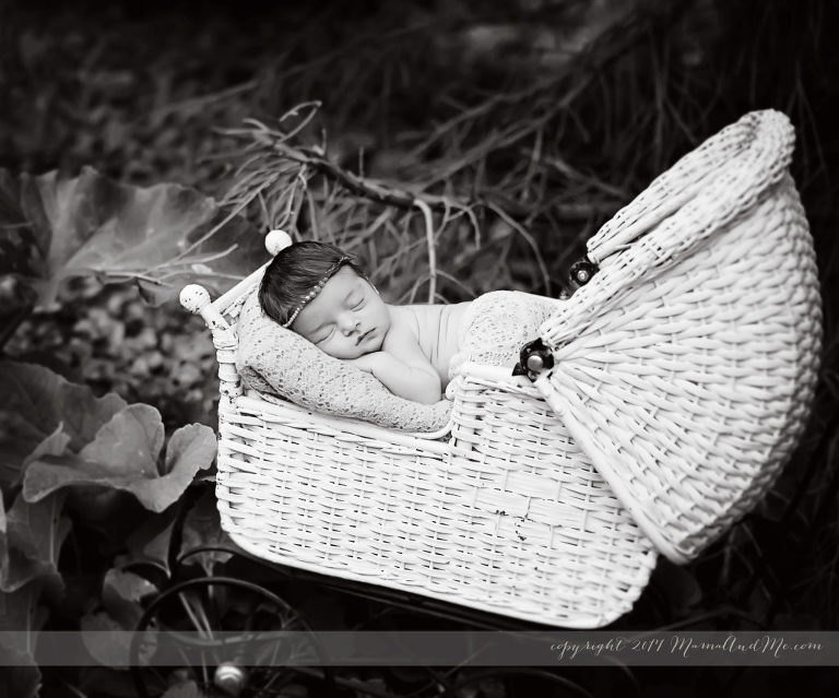 Newborn Photography Outdoor Love Mama And Me Photography Spa